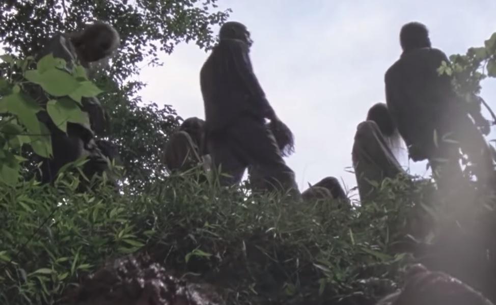 Οι Whisperers κάνουν την πρώτη τους εμφάνιση στο νέο trailer του Walking Dead - Roxx.gr