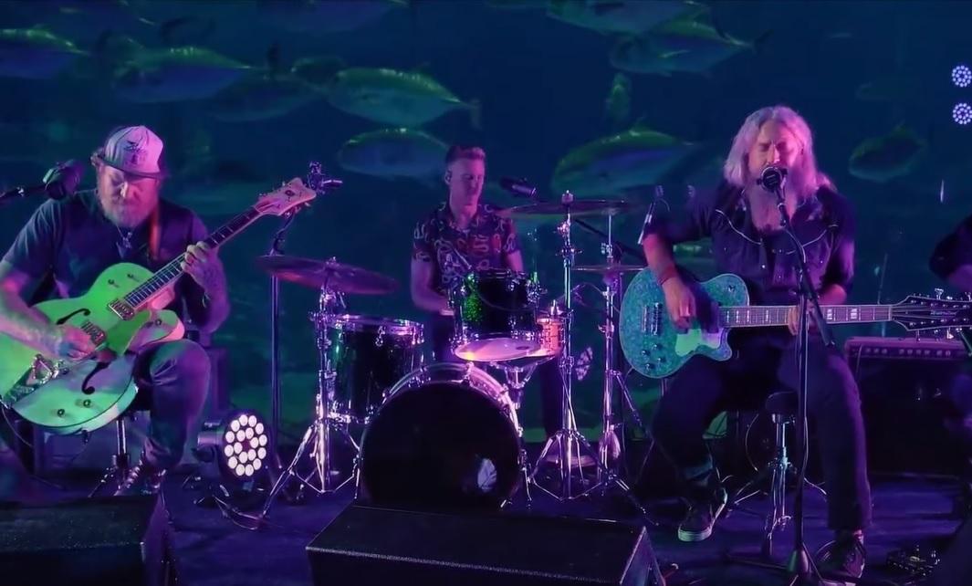 Αυτό είναι το νέο τραγούδι που έπαιξαν οι Mastodon μέσα στο ενυδρείο! - Roxx.gr